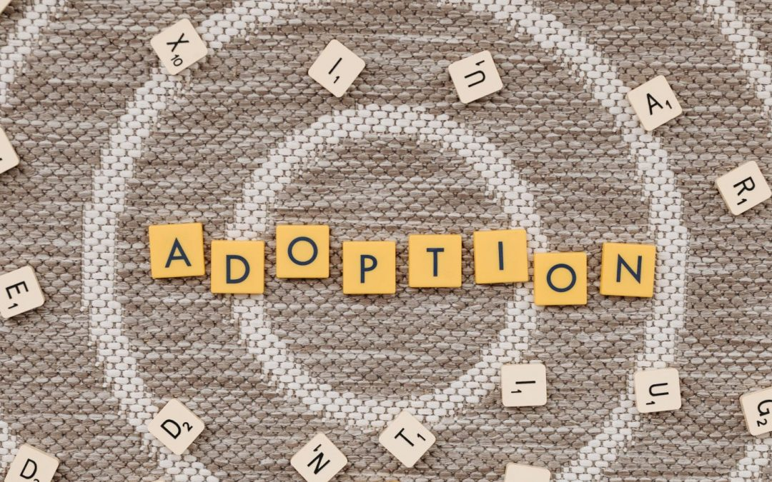 Are You Using an Adoption Agency? Important Pros and Cons to Know