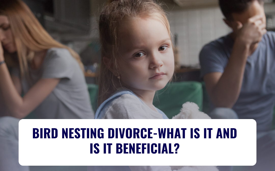 BIRD NESTING DIVORCE-WHAT IS IT AND IS IT BENEFICIAL?